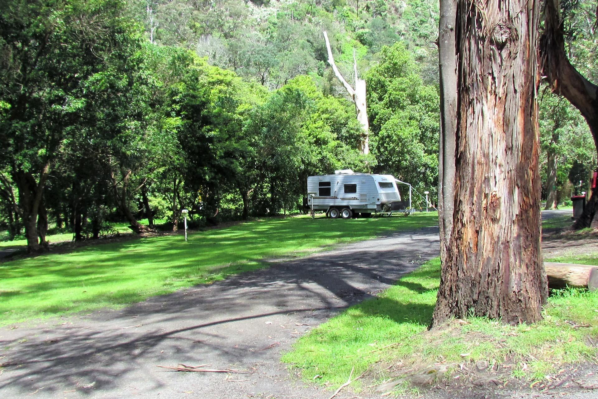 a - Tarra Valley Caravan Park