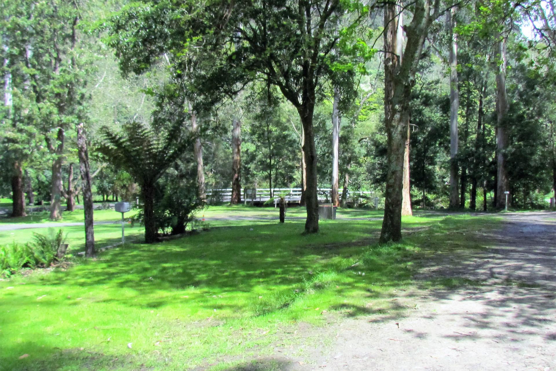 j - Tarra Valley Caravan Park