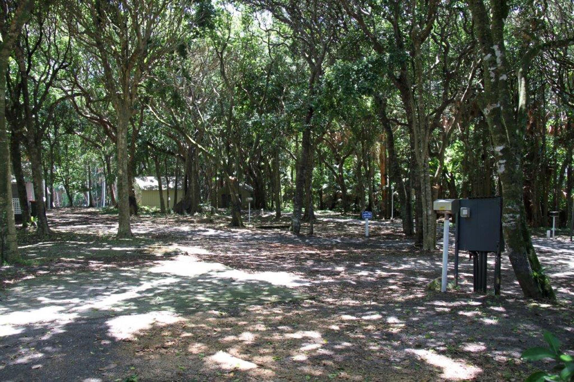 a - Tiona Palms Caravan Park