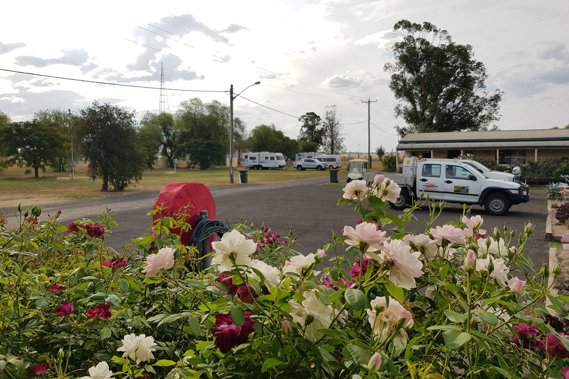 a - Narromine Tourist Park