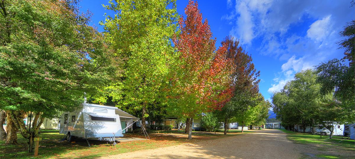 a - Big 4 Porepunkah Holiday Park
