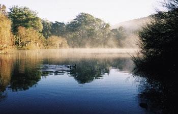 Lake Alexandra.JPG