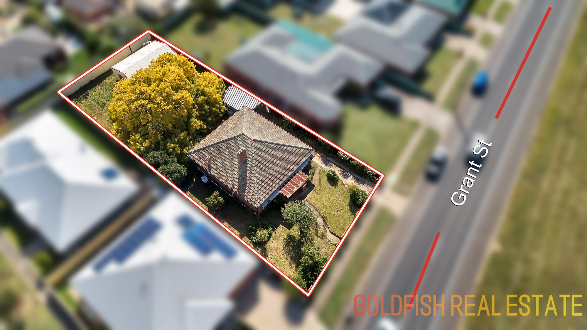 Goldfish Property Details