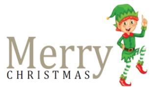 Christmas Elf 2018.jpg
